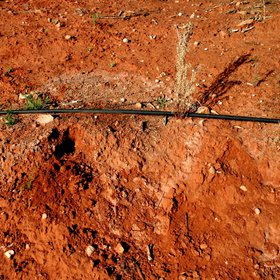 Accumulation of salts after drip irrigation in an arid area of Valencia (E Spain)