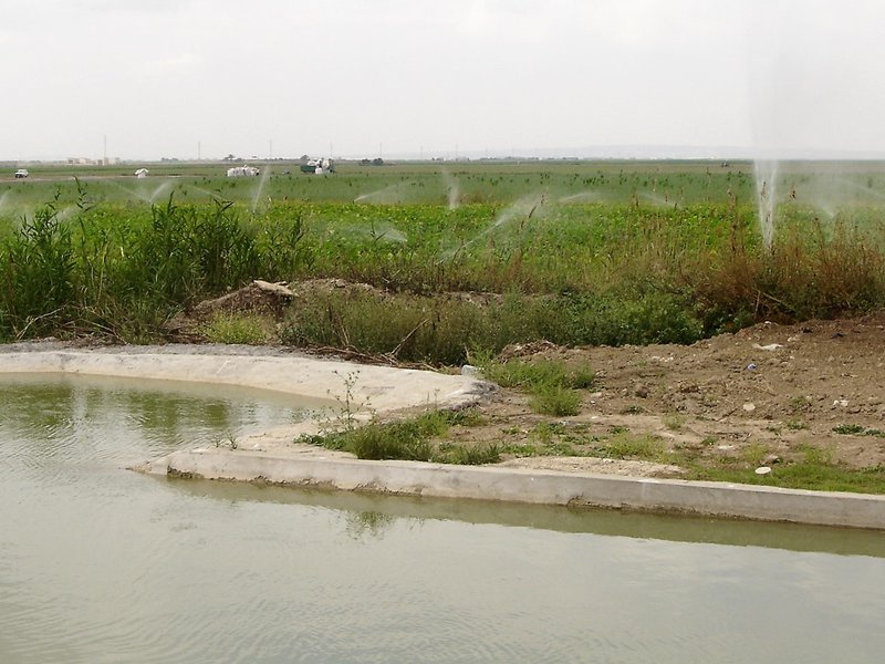 Irrigation system in the Guadalquivir Valley