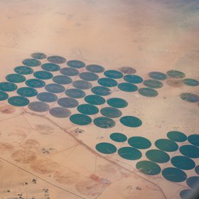 pivotal irrigation in the Egyptian desert