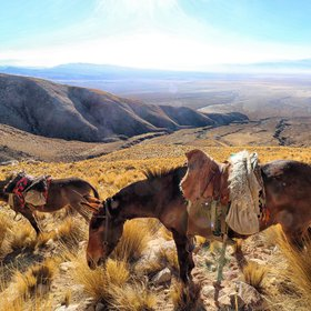 Transportation in the Andes