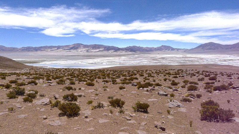 Volcanoes and salars of the Altiplano