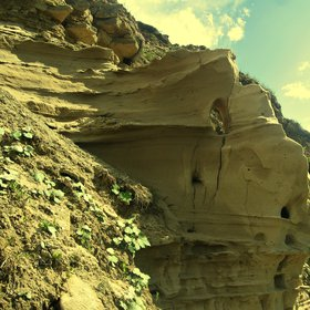 Spectacular aeolian landforms from Suceava River Valley