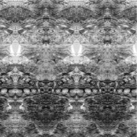 Artificial mirror effect on radiographic image of sea shells