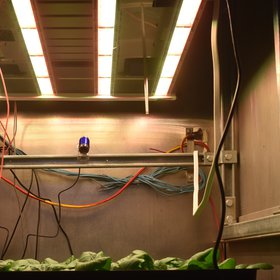 Growing food in our way to Mars