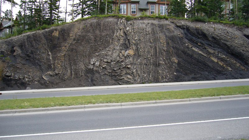 Fold & Thrusted Kootney Formation, Canmore, Alberta