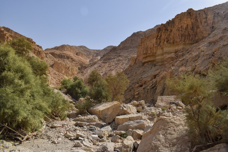 Wadi Channel in the Moab Mountains, Ghor Al-Haditha