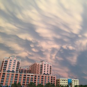 Mammatus clouds near sunset