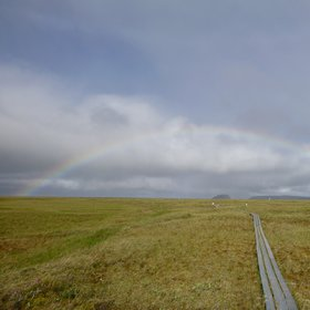 Arctic Rainbow in the Lena River Delta