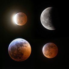The Eclipse of 2019 - Super Blood Wolf Moon