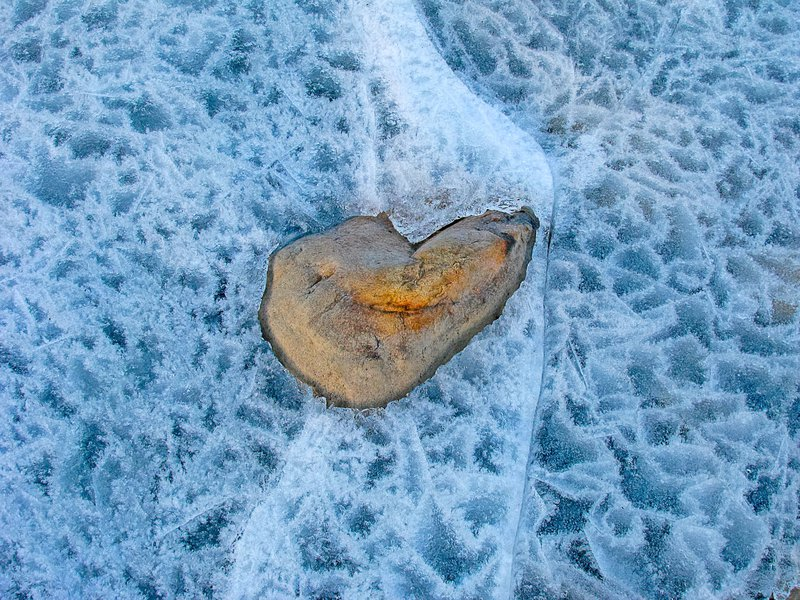 Frozen heart in Norwegian winter