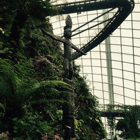 The artificial cloud forest