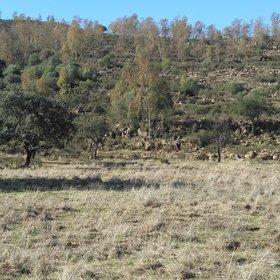Soil erosion on slopes and sedimentation in flat areas on ridges of El Berrocal (Seville, Spain)