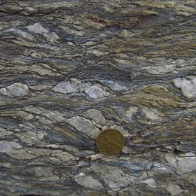 S-C mylonite in the Calamita Schists (Island of Elba, Italy)