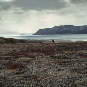 Moody day hike in Young Sound, Greenland