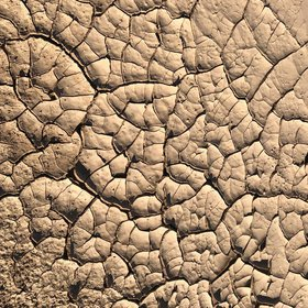 Mud Cracks Attractive Outcrop